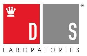 Logo DS Labs
